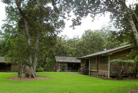 Recreation Area Cabins by Kalopa State Recreation Area Great Spot For Family
