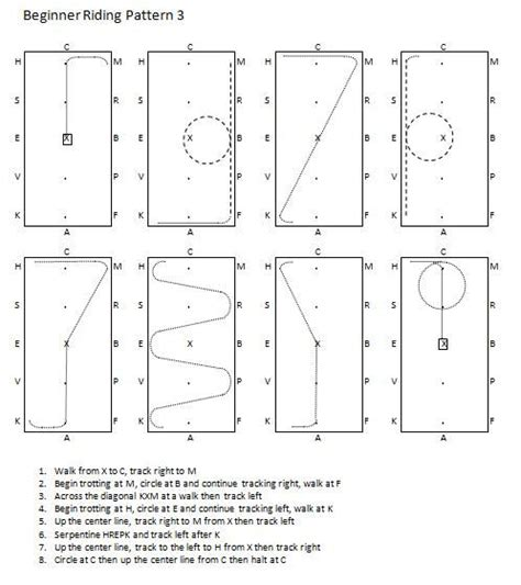 pattern for riding stock beginner riding pattern horse of course pinterest