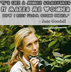 man of many words famous fake quotes jane goodall