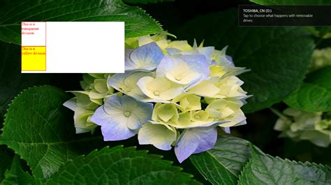 iframe background color html5 vs iframe transparency xibo community