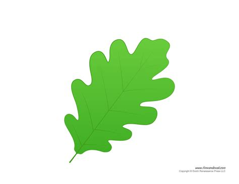 printable colored leaves leaf templates leaf coloring pages for kids leaf