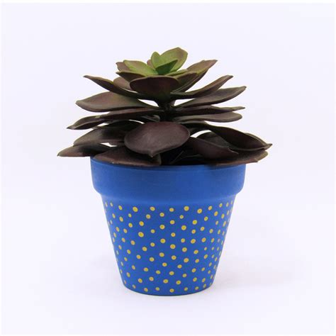 cute planters terracotta pot succulent planter cute blue planter small