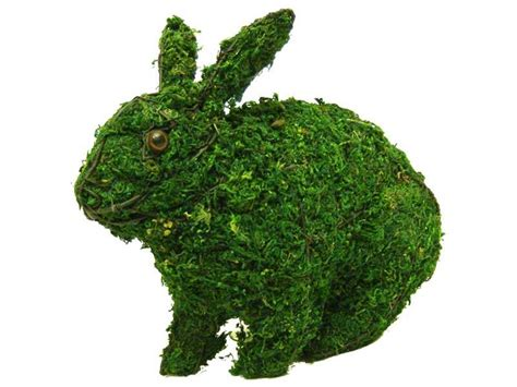 rabbit topiary 13 quot mossed hopping rabbit topiary