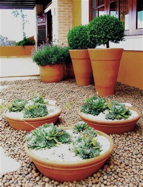 plantadores de arvores 25 melhores ideias sobre vasos de plantas suculentas no