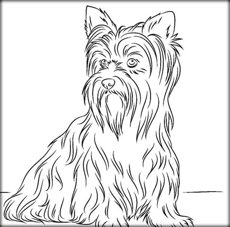 free printable dog coloring pages for adults color zini free printable dog coloring pages for adults color zini