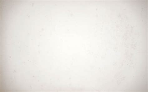 Paper With - background white gallery photo background paper