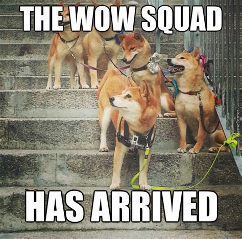 Shibe Meme Maker - much gang very danger don t mess with shibe by