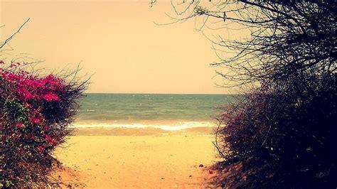 background romantic romantic beach backgrounds walldevil