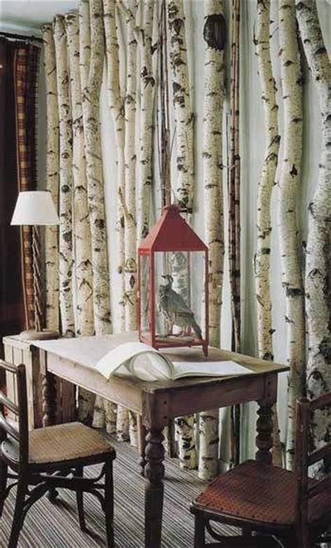 Aspen Branches Decorating by 1000 Images About Decorating With Aspen Birch Trees On