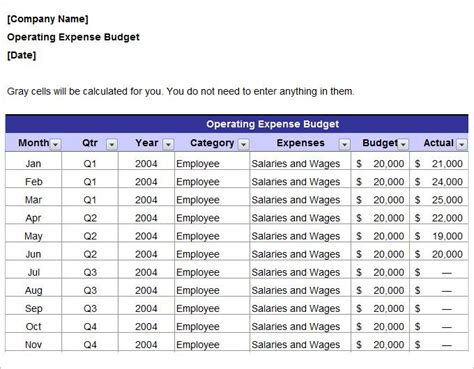 annual marketing budget template annual operating marketing budget plan template