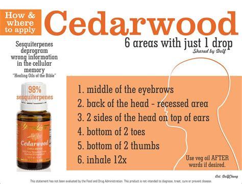 best 25 living cedarwood ideas on