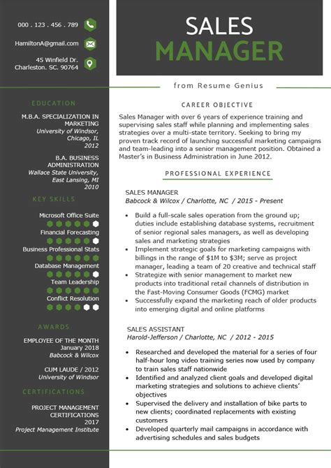 sales manager resume sample writing tips resume genius