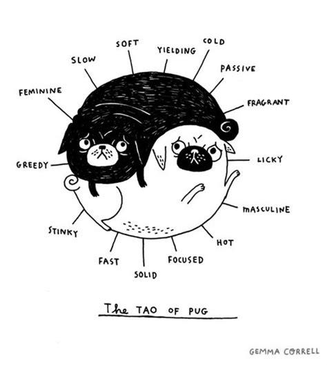 pug yin yang yin yang pug i pugs
