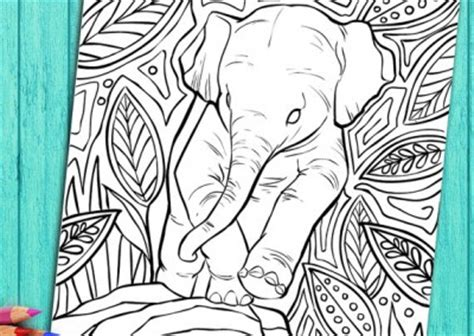 coloring books for adults images coloring book pages selah works coloring books