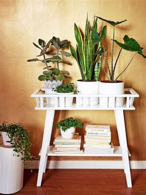 ikea plant ideas lantliv ikea plant stand indoor plants indoor plants