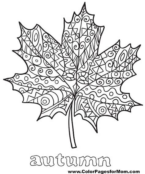 leaves coloring pages for adults advanced leaves coloring page 35
