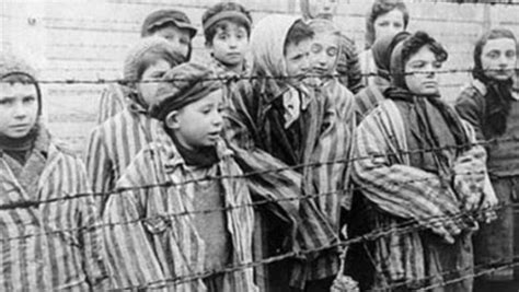 imagenes holocausto judio por nazis sobrevivir al holocausto