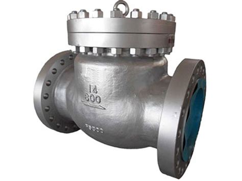 swing check valve cryogenic swing check valve