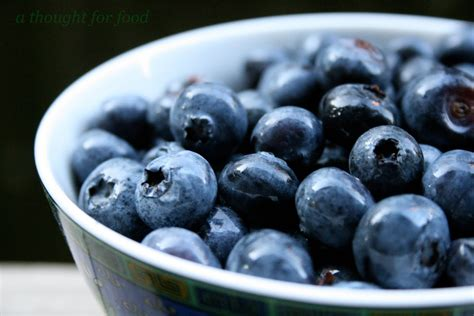 what color are blueberries blue blueberry colors photo 34682996 fanpop