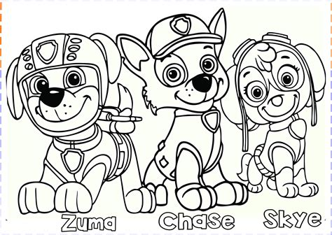 paw patrol coloring pages  printable coloring pages