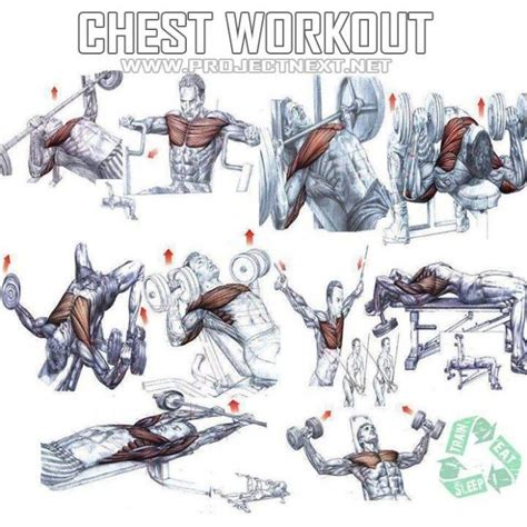 is bench press the best chest exercise chest workout healthy fitness exercises gym bench press yeah we train health