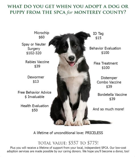 and puppy rescue adoption value spca for monterey county