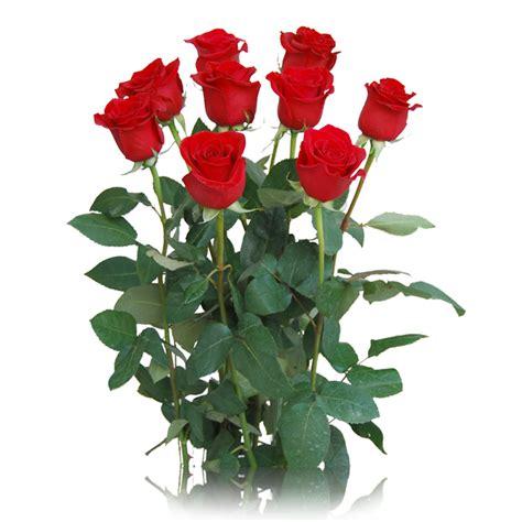 imagenes de rosas rojas frescas arreglo de rosas rojas regalarflores net