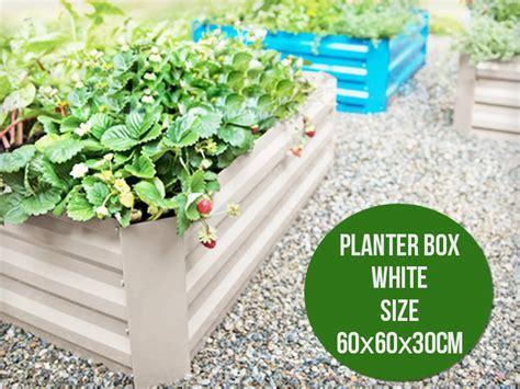 60 Planter Box by Diy Zinc Planter Box 60 X 60cm Sales We The