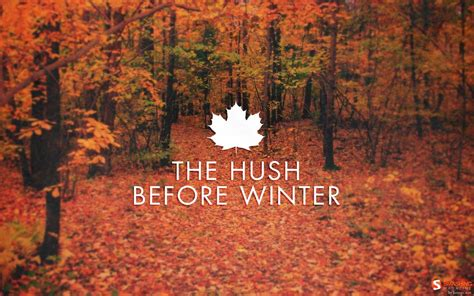 tumblr themes free autumn the hush before winter pictures photos and images for