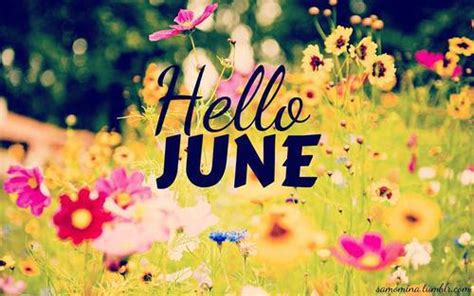 June S Hello June Images Photo Graphics Downloadclipart Org