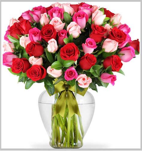imagenes de rosas descargar gratis descargar gratis imagenes de rosas brillantes para celular