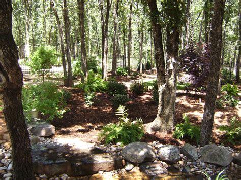 wooded garden redbud design