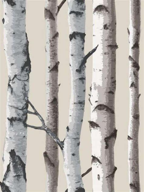 silver birch wallpaper interesting  alternative