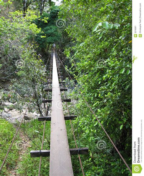 swinging bridges maui swinging bridge in waihe e val stock image image 3216561