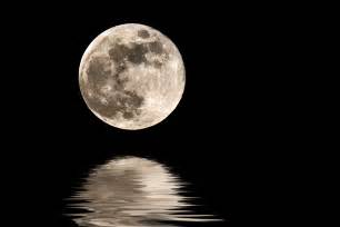 moon journey alex grey