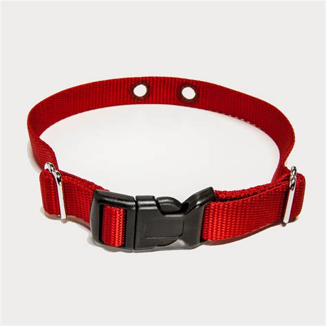 pet collar pet collar st louis fence