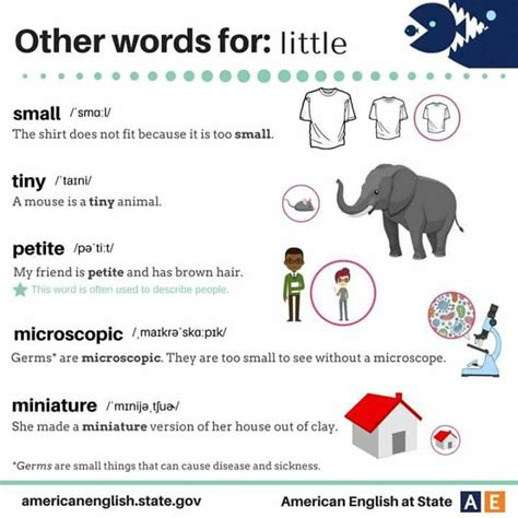 other words for other words for materials for learning