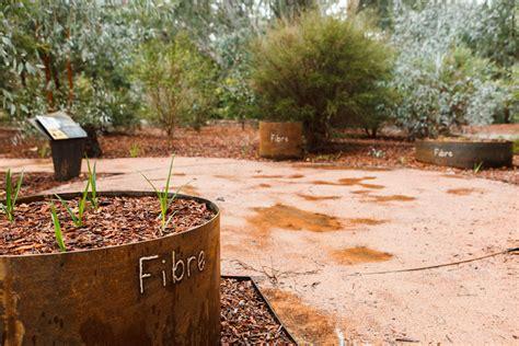 Bush Garden Ta by Bullawah Cultural Trail Culture Wangaratta