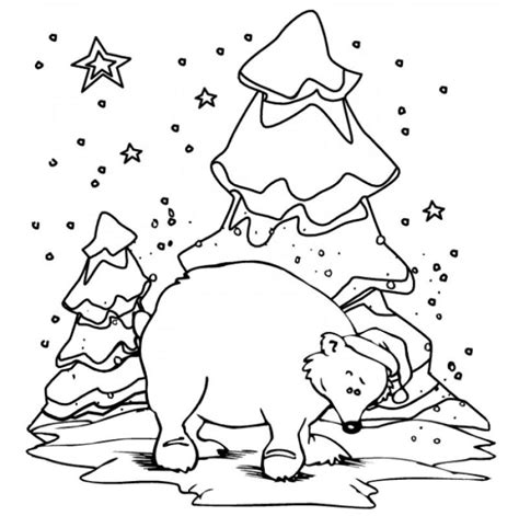 winter bear coloring page polar bear coloring sheet page image clipart images