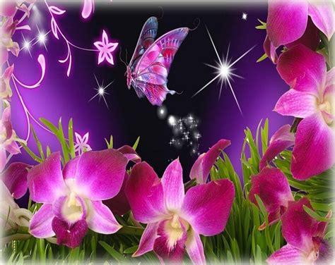 imagenes sorprendentes de flores imagenes de fondos de flores las mejores imagenes