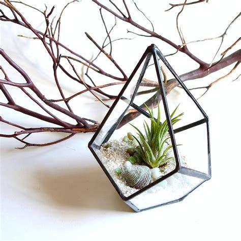 geometric terrarium pod air plant glass terrarium