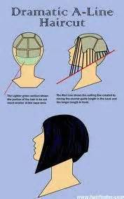 diagram of wedge haircut 1000 images about cut on pinterest how to cut hair