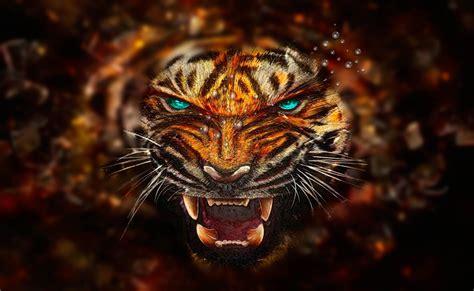 imagenes de tigres cool fondo escritorio tigre feroz