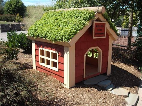 roof dog house diy green roof dog veranda your projects obn