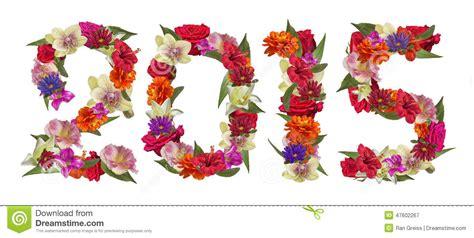 sentosa new year 2015 flower gelukkig nieuwjaar 2015 kleurrijke bloemen stock