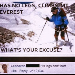 Everest College Meme - inspired nolegs gif inspired nolegs everest discover