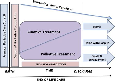 comfort care vs palliative care is there a difference in