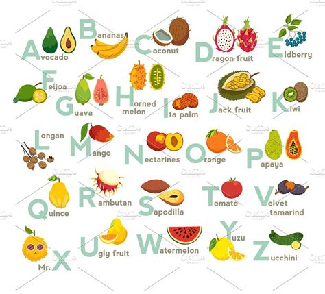 fruit 7 letters fruits abc vector fruit alphabet illustrations