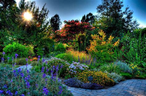 beauty garde beautiful garden beauty blue colorful colors flowers