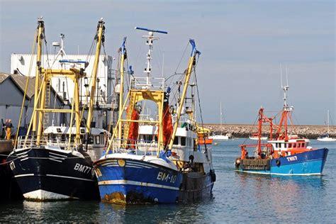 boat market prices buoyant market prices at brixham fishing news